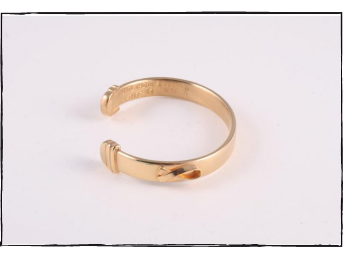 The Bracelet - 24K Gold Plated