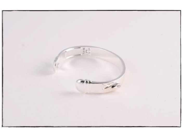 The Bracelet - Silver Plated